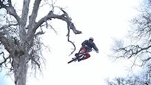 Video: Brandon Semenuk - Liaison Series
