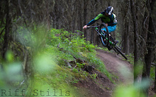 Must Watch: Silvia - Dylan Sherrard Spring Trail Party