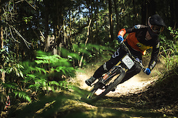 Harry Alford: Trail Blazing - Video