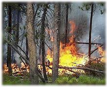 Extreme Fire Hazard Forces Closure